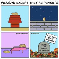 Memes, Sorry, and Buzzfeed: PEANUTS EXCEPT THEY'RE PEANUTS  @THISJENLEWIS  BUZZFEED  WEL  GREAT  HERE  LIES  LINUS  HE CRACKED  MEI Sorry, Linus