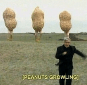 Peanuts and Growling: [PEANUTS GROWLING]