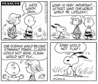 Memes, World, and Peanuts: PEANUTS  I HATE  WIND IS VERY IMPORTANT  WINDY  WITHOUT WIND OUR WORLD  DAYS  WOULD BE LIFELESS  EARS WOULD  OUR OCEANS WOULD BECOME  NOT FLAP  STA6NANT PONDS.. CLOUDS  WOULD NOT MOVE. FLAGS  WOULD NOT FLY... This strip was published on May 4, 1968. 🍃