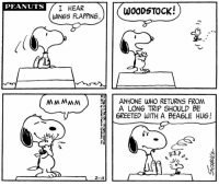 Happy National Best Friends Day! 💛 Only Charles Schulz could create a friendship between a beagle and a bird and make it work.  Schulz employed Snoopy and Woodstock to showcase the complexities of friendship. And despite sometimes having their differences, their friendship is one of the strongest and well-loved of the strip. This strip was published on February 4, 1971.: PEANUTS  I HEAR  WOODSTOCK!  WINGS FLAPPING  MMMMM ANYONE WHO RETURNS FROM  A LONG TRIP SHOULD BE  6REETED WITH A BEA6LE HUG!  2-4 Happy National Best Friends Day! 💛 Only Charles Schulz could create a friendship between a beagle and a bird and make it work.  Schulz employed Snoopy and Woodstock to showcase the complexities of friendship. And despite sometimes having their differences, their friendship is one of the strongest and well-loved of the strip. This strip was published on February 4, 1971.