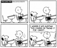 Memes, Peanuts, and Wonder: PEANUTS  Im. Reg. U. S. Pot, Off-Al rights eserved  1968 by Usited Feoture Syndicate, Inc.  I WONDER IF HE'S AUDITING  THIS COURSE, OR TAKING IT  FOR CREDIT.  つ. This strip was published on October 21, 1968. 🐾🍎