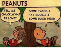 Head, Love, and Memes: PEANUTS  TELL ME  SOME TACOS A  CHUCK WHA  FAT DOOBIE &  IS LOVE?  SOME GOOD HEAD Tommy Chong wants to hook you up with the best pipe in the world!  Enter here: https://goo.gl/RYRyw7
