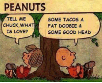 Head, Love, and Memes: PEANUTS  TELL ME  SOME TACOS A  CHUCK, WHA  FAT DOOBIE &  IS LOVE?  SOME GOOD HEAD