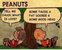 Head, Love, and Memes: PEANUTS  TELL ME  SOME TACOS A  CHUCK, WHA  FAT DOOBIE &  IS LOVE?  SOME GOOD HEAD .