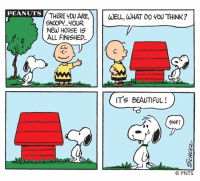 Beautiful, Community, and Fire: PEANUTS THERE Y0U ARE, WELL, WHAT DO 40U THINK  11  SNOOP YOUR  NEW HOUSE IS  ㄏㄧㄧㄧㄧ  ALL FINISHED.  IT's BEAUTIFUL!  GNIF!  © PNTS In 1966, Charles Schulz's art studio was destroyed by fire. The experience later appeared in the Peanuts comic strip when Schulz created a storyline about Snoopy's doghouse burning down. As this week marks the one-year anniversary of the 2017 Sonoma County wildfires, this strip from October 4, 1966, is reminiscent of the many acts of kindness that were seen in the days, weeks, and months that followed. The Schulz Museum is proud to be a part of such a strong community.  #SonomaStrong
