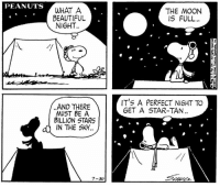 This strip was published on July 30, 1971. 🌕: PEANUTS  WHAT A  BEAUTIFUL  NIGHT  THE MOON  IS FULL.  IT'S A PERFECT NIGHT TO  GET A STAR-TAN  AND THERE  MUST BE A  BILLION STARS  IN THE SK4.  4  7-30 This strip was published on July 30, 1971. 🌕