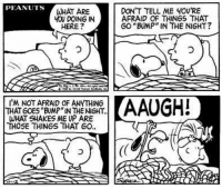 """That Snoopy... lol.: PEANUTS  WHAT ARE  YOU DOING IN  HERE  I'M NOT AFRAID OF ANRTHING  THAT GOES BUMP""""IN THE NIGHT.  WHAT SHAKES ME UP ARE  THOSE THINGS THAT GO  DON'T TELL ME YOU'RE  AFRAID OF THINGS THAT  GO """"BUMP"""" IN THE NIGHT?  AAUGH! That Snoopy... lol."""