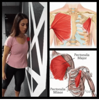 Memes, Work, and Common: Pectoralis  Major  PectoralisDayPo  Minorav MUSCLE KNOTS IN YOUR SHOULDER Today we are going to cover how to release some of the muscular tension you feel in your shoulder, as demonstrated by @quaddoc. . Some common muscles that we see that need some work are: 🔸Pec major-minor 🔸Latissmus dorsi 🔸Subscapularis Work on the tender spots for 30 seconds to a minute to get your shoulder loosened up and feeling better. . Tag a friend 🙋 and show their shoulders some 😙love! . 🎶Kiiara-Feels (Jai Wolf Remix) . MyodetoxOrlando Myodetox