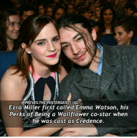 Emma Watson, Memes, and 🤖: @PEE VES.THEPOLTERGEISTIIIG  Ezra Miller first called Emma Watson, his  Perks of Being a Wallflower co-star when  he was cast as Credence. Q- Who's the first person you'd call if you were cast in Fantastic Beasts? Follow my backup @mr.scamander Tag a friend! harrypotter potterhead fantasticbeasts fantasticbeastsandwheretofindthem