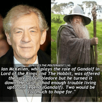 Q- Anyone else who loves lord of the rings and The Hobbit?? Tag a friend! harrypotter potterhead: @PEEVES.THEPOLTERGEISTI IIG  Ian McKellen, who plays the role of Gandalf in  Lord of the Rings and The Hobbit, was offered  the role of Dumbledore but he turned it  down. He said, had enough trouble living  upto one legend (Gandalf). Two would be  too much to hope for. Q- Anyone else who loves lord of the rings and The Hobbit?? Tag a friend! harrypotter potterhead