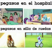 pos pos :'v Anime: My Little pony :v ok no xD: pegasos en el hospital  pegasos en silla de ruedas pos pos :'v Anime: My Little pony :v ok no xD