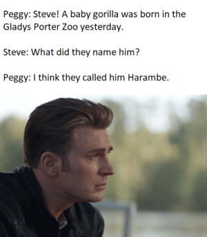 Press F to pay Respects. Never forget: Peggy: Steve! A baby gorilla was born in the  Gladys Porter Zoo yesterday.  Steve: What did they name him?  Peggy: I think they called him Harambe. Press F to pay Respects. Never forget