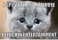 meme maker: PELUCHIN ENTERTAINMENT  easy meme maker