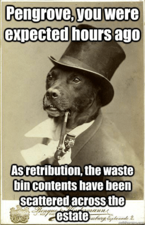 Lets bring back Old Money Dog! Ive missed you, buddy.: Pengrove, you were  expected hours ago  Asretribution, the waste  bincontents have been  scattered acrossthe  estate Lets bring back Old Money Dog! Ive missed you, buddy.