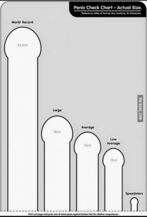 Apparently you can print this out and measure. But, are these pretty accurate?: Penis Check Chart Actual Size  Reference: Atlos of Human Sex Anatomy. RL Dickenson  World Record  34.3cm  Large  Average  18cm  Low  Average  15cm  12cm  Speedsters  Print out poge and push root of orect penis against broken fine for relative Apparently you can print this out and measure. But, are these pretty accurate?