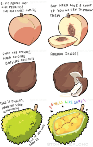 People are like fruits, you know… [OC] Please add more fruit-person analogies it comments 🌝: People are like fruits, you know… [OC] Please add more fruit-person analogies it comments 🌝