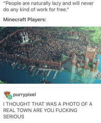 """people with a passion will do a lot for free: """"People are naturally lazy and will never  do any kind of work for free.""""  Minecraft Players:  purry pixel  I THOUGHT THAT WAS A PHOTO OF A  REAL TOWN ARE YOU FUCKING  SERIOUS people with a passion will do a lot for free"""