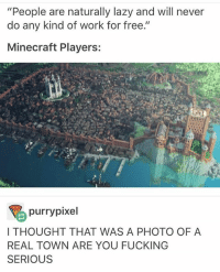 """oh: """"People are naturally lazy and will never  do any kind of work for free  II  Minecraft Players:  purry pixel  I THOUGHT THAT WAS A PHOTO OF A  REAL TOWN ARE YOU FUCKING  SERIOUS oh"""
