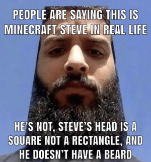 People Are Saying This Is Minecraft Steve In Real Life He S Not
