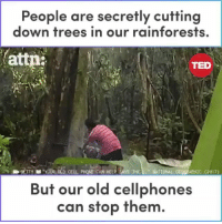 "@Regran_ed from @attndotcom - Our old cell phones are being used to protect the rainforest! 🌱 - regrann: People are secretly cutting  down trees in our rainforests,  attn  TED  YOUR OLD CELL PHONE CAN HELP SAVE THE""NATIONAL GEOGRAPHIC (2017)  But our old cellphones  can stop them @Regran_ed from @attndotcom - Our old cell phones are being used to protect the rainforest! 🌱 - regrann"