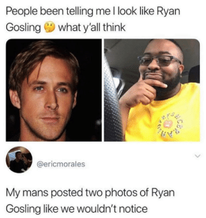 You think we dumb Ryan?: People been telling me l look like Ryan  Gosling what y'all think  @ericmorales  My mans posted two photos of Ryan  Gosling like we wouldn't notice You think we dumb Ryan?