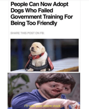 I want all of them: People Can Now Adopt  Dogs Who Failed  Government Training For  Being Too Friendly  SHARE THIS POST ON FB:  I'l take your entire stock I want all of them