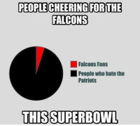 No surprise here: PEOPLE CHEERING FOR THE  FALCONS  Falcons Fans  People who hate the  Patriots  THIS SUPERBOWL No surprise here