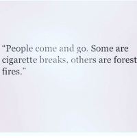 """Memes, 🤖, and Forest: """"People come and go. Some are  cigarette breaks. others are forest  fires Complete and utter chaos 🔥🔥🔥 @browneyes.thickthighs"""