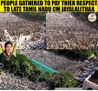 Indianpeoplefacebook, Tamil, and Tamil Nadu: PEOPLE GATHERED TO PAY THIER RESPECTI  TO LATE TAMIL NADU CM JAYALALITHAA  u ghing colours.com 🙏🙏🙏