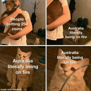 It's so fucking hot: People  getting 250  coins  Australia  literally  being on fire  Australia  literally being  on fire  Australia  literally being  on fire  made with mematic It's so fucking hot