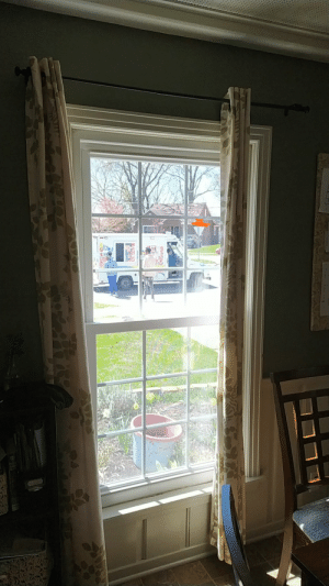 People going around in a ice cream truck: People going around in a ice cream truck