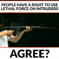 Memes, 🤖, and Intruders: PEOPLE HAVE A RIGHT TO USE  LETHAL FORCE ON INTRUDERS  AGREE?