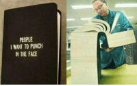 Girl Memes, Story of My Life, and The Face: PEOPLE  I WANT TO PUNCH  IN THE FACE story of my life