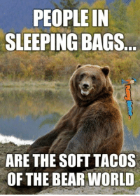 Memes, 🤖, and Gears: PEOPLE IN  SLEEPING BAGS  ARE THE SOFT TACOS  OF THE BEAR WORLD Just another reason why you need to Win this month's MCS MAG Survival Gear Giveaway! Ends Tonight! Click link for more info & to Enter Now! ---> http://mcs-mag.com/fb/win-free-survival-gear