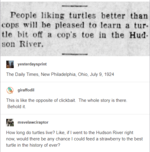 Turtle vs Cop: People liking turtles better than  cops l be pleased to learn a tur  tle bit off a cop's toe in the Hud-  son River.  The Daily Times, New Philadelphia, Ohio, July 9, 1924  giraffodil  This is like the opposite of clickbait.  Behold it.  The whole story is there.  msvelawciraptor  How long do turtles live? Like, if I went to the Hudson River right  now, would there be any chance I could feed a strawberry to the best  turtle in the history of ever? Turtle vs Cop