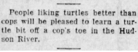 giraffodil:  yesterdaysprint:   The Daily Times, New Philadelphia, Ohio, July 9, 1924   This is like the opposite of clickbait.  The whole story is there.  Behold it. : People liking turtles better than  cops wi be pleased to learn a tur  tle bit off a cop's toe in the Hud  son River. giraffodil:  yesterdaysprint:   The Daily Times, New Philadelphia, Ohio, July 9, 1924   This is like the opposite of clickbait.  The whole story is there.  Behold it.