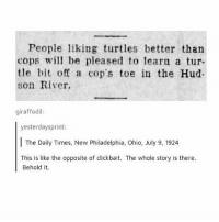 Night guys xx: People liking turtles better than  cops wil be pleased to learn a tur-  tle bit off a cop's toe in the Hud  son River.  giraffodil:  yesterdaysprint  The Daily Times, New Philadelphia, Ohio, July 9, 1924  This is like the opposite of clickbait. The whole story is there.  Behold it. Night guys xx