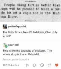 clickbait: People liking turtles better than  cops wll be pleased to learn a tur  tle bit off a cop's toe in the Hud  son River.  yesterdaysprint  The Daily Times, New Philadelphia, Ohio, July  9, 1924  giraffodil  This is like the opposite of clickbait. The  whole story is there. Behold it.  Source: yesterdaysprint  02,264 notes D