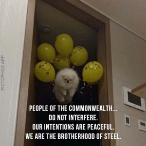 Steel, Commonwealth, and Brotherhood: PEOPLE OF THE COMMONWEALTH.  DO NOT INTERFERE.  OUR INTENTIONS ARE PEACEFUL.  WE ARE THE BROTHERHOOD OF STEEL.