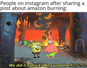 Amazon, Instagram, and Invest: People on instagram after sharing  post about amazon burning:  a  We did it Patrick! We saved the Amazon. Invest on thoughts and prayers and get 0 returns via /r/MemeEconomy https://ift.tt/2KYyfp6