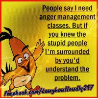 Anger Management: People say I need  anger management  classes. But if  you knew the  stupid people  I'm surrounded  by you'd  understand the  problem. Anger Management