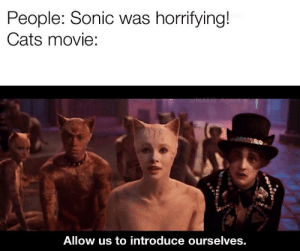 Ourselves: People: Sonic was horrifying!  Cats movie:  u/NATO Agent  Allow us to introduce ourselves.