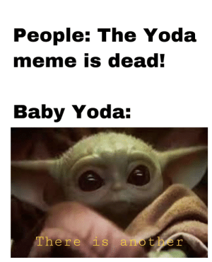 There's another!: People: The Yoda  meme is dead!  Baby Yoda:  There is another There's another!