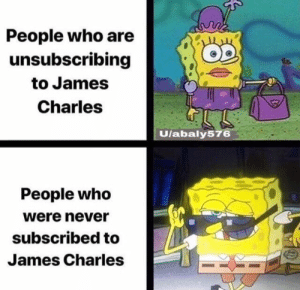 James Charles: People who are  unsubscribing  to James  Charles  Ulabaly576  People who  were never  subscribed to  James Charles