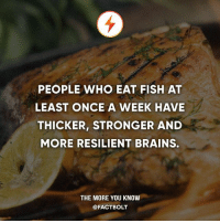 Brains, Food, and Memes: PEOPLE WHO EAT FISH AT  LEAST ONCE A WEEK HAVE  THICKER, STRONGER AND  MORE RESILIENT BRAINS.  THE MORE YOU KNOW  @FACT BOLT What's your favourite food?