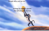 Memes, Happy, and Wholesome: People who sort by hot  Sorting by n  upvote  the wholesome memes Everyone deserves to be happy