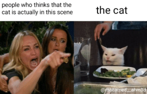 ?: people who thinks that the  cat is actually in this scene  the cat  @mohamed ahm3d ?