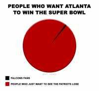 Accurate...: PEOPLE WHO WANT ATLANTA  TO WIN THE SUPER BOWL  @NFL MEMES  FALCONS FANS  PEOPLE WHO JUST WANT TO SEE THE PATRIOTS LOSE Accurate...