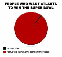 True Story.: PEOPLE WHO WANT ATLANTA  TO WIN THE SUPER BOWL  @NFL MEMES  FALCONS FANS  PEOPLE WHO JUST WANT TO SEE THE PATRIOTS LOSE True Story.