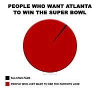 Falcon Fans: PEOPLE WHO WANT ATLANTA  TO WIN THE SUPER BOWL  NFL MEMES  FALCONS FANS  PEOPLE WHO JUST WANT TO SEE THE PATRIOTS LOSE
